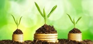 para analizar una cuenta de resultados (o cuenta de pérdidas y ganancias), el beneficio es uno de los primeros factores que se debe tener en cuenta.